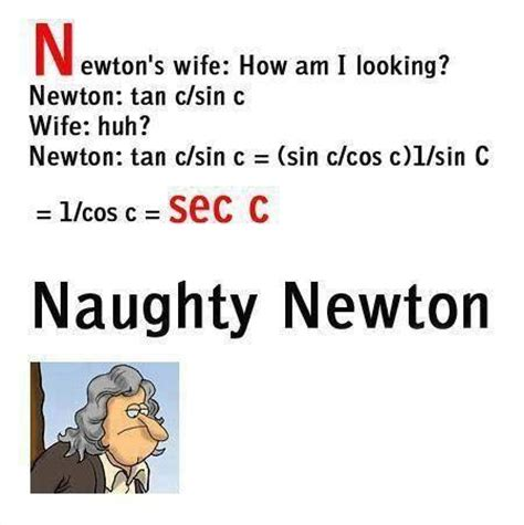 Essay on Isaac Newton biography